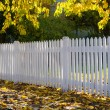Neighborhood fence - Stock Photo