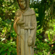 Mother Mary watches over garden — Stock Photo #11892444