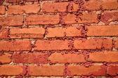 Red brick background — Stockfoto