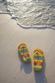 FLIP FLOPS AT THE WATER'S EDGE — Foto de Stock