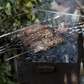 Barbecued meat — Stock Photo
