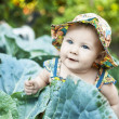 Happy little child in cabbage — Stock Photo