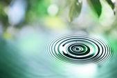 Water drop close up — Stock Photo