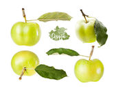Set green apple with leaf in different angles, isolated on white — Stock Photo