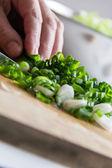 Cutting onion — Stock Photo