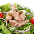 Mixed salad with tuna fish, onion and tomatoes — Stock Photo