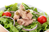 Mixed salad with tuna fish, onion and tomatoes — Stock Photo