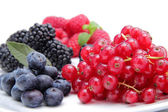 Currant berries and blueberries on white background — 图库照片