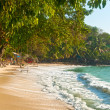 Foto Stock: Exotic tropical beach