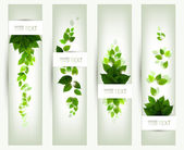 Set of four banners — Stockvector