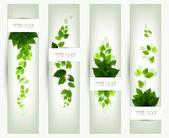 Set van vier banners — Stockvector