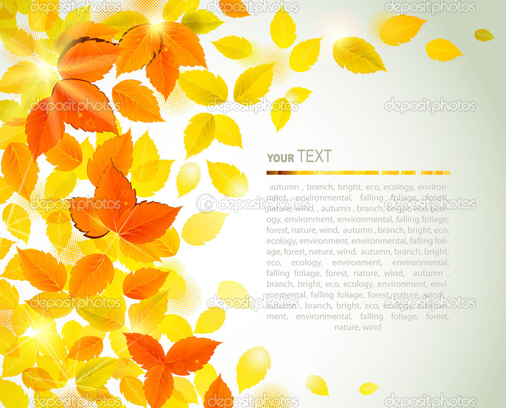 与黄色落叶秋背景 — 矢量图片作者