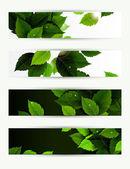 Headers uppsättning av fyra banners för miljön — Stockvektor