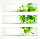 Set of three banners with fresh green leaves — Stockvector