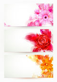 Set of three banners, abstract headers with flowers and artistic blots — Stock vektor