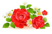 Red roses with white chamomilies — Vector de stock