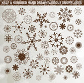 Half a hundred hand drawn various snowflakes — Stock Vector