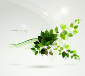 Summer shine on the branch with fresh green leaves — Stock Vector