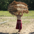 Burmese woman carrying palm tree roofing panels on her head, Inle lake, Shan state, Myanmar, Southeast Asia — Stock Photo