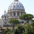 Saint Peter's Basilica dome, Vatican City, Rome, Italy — Stock Photo