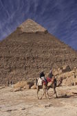 Pyramid of Khafre and camels, Cairo, Egypt — ストック写真