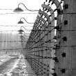Old style photo of Auschwitz camp, electric fence — Stock Photo