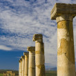 Stock Photo: Roman ruins in Volubilis, Morocco