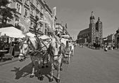 The Main square in Krakow — Stock Photo