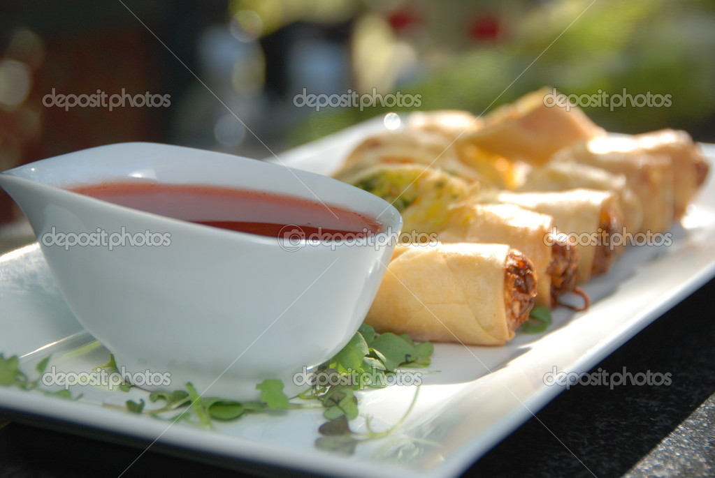 Egg Rolls with Dipping Sauce — Stock Photo © FruitFly7 #11810316