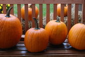 Pumpkins on Bench — Stock Photo