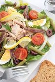 Nicoise Salad — Stock Photo