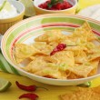 Mexican nachos and salsa — Stock Photo