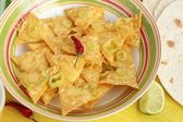 Mexican nachos and tortillas — Stock Photo