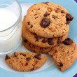 Chocolate Cookies With Milk — Stock Photo