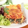 Spinach and ricotta cannelloni with a simple green salad — Stock Photo