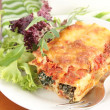 Spinach and ricotta cannelloni with a simple green salad - Stock Photo