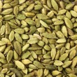 Green cardamom seeds - Stock Photo
