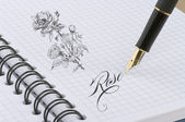 Rose illustration with gold pen — Stock Photo
