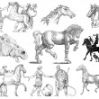 Stock Photo: Horses set