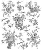 Old roses illustration — Stock Photo