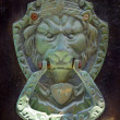 Door handle and door knocker with lion head - Stock Photo