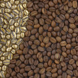 Coffee beans — Stock Photo #11954899