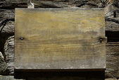 Old wood texture (for background) — Foto Stock