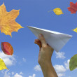 Paper airplane in a hand — Stock Photo #11984333