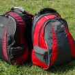Stock Photo: Modern backpacks