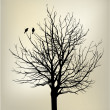 2 birds on tree — Vector de stock