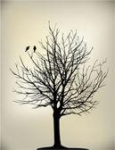 2 oiseaux sur arbre — Vecteur
