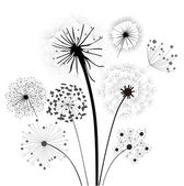 Dandelion Collection — Stock Vector