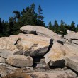 Schoodic Point 2 — Photo