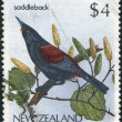 Stock Photo: NEW ZEALAND - CIRC1986: Postage stamps printed in New Zealand, shows bird Saddleback (Philesturnus carunculatus), circ1986